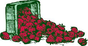 StrawberryColoringBook