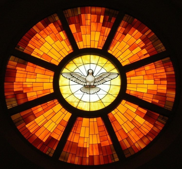 dove rose window